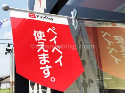 獲得したPayPayボーナスライトはどこで利用できますか?